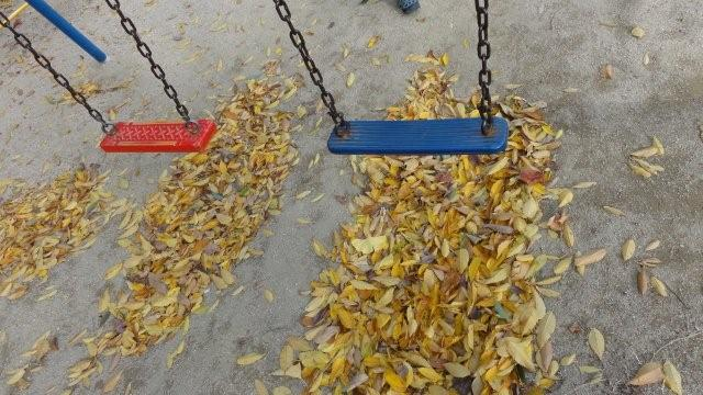 Fall_c0157558_9415793.jpg
