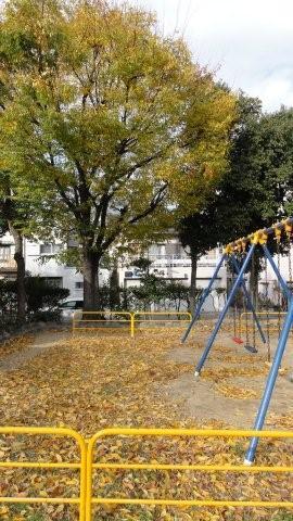 Fall_c0157558_9423486.jpg