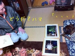 f0177261_1050549.jpg