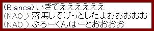 b0096491_231499.jpg