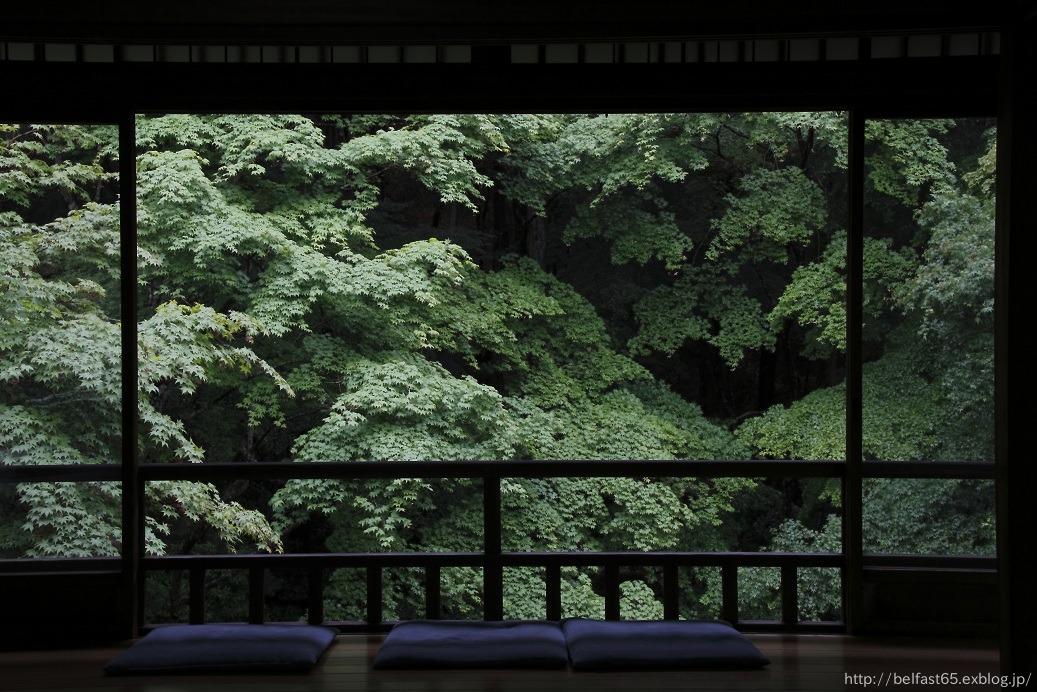 雨の瑠璃光院_f0095094_0374931.jpg