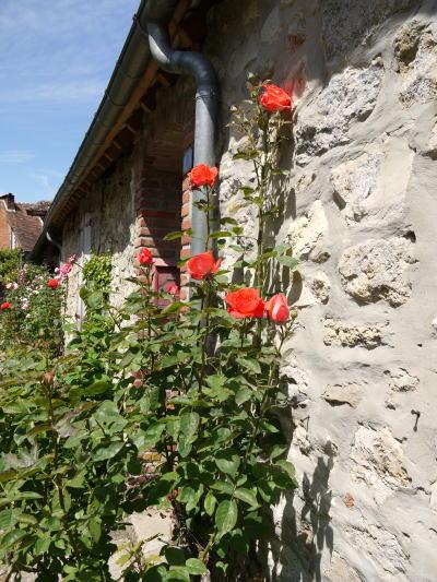 美しいバラの村「Gerberoy」 その2_c0090198_3262361.jpg