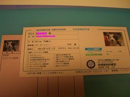 f0137013_22551057.jpg