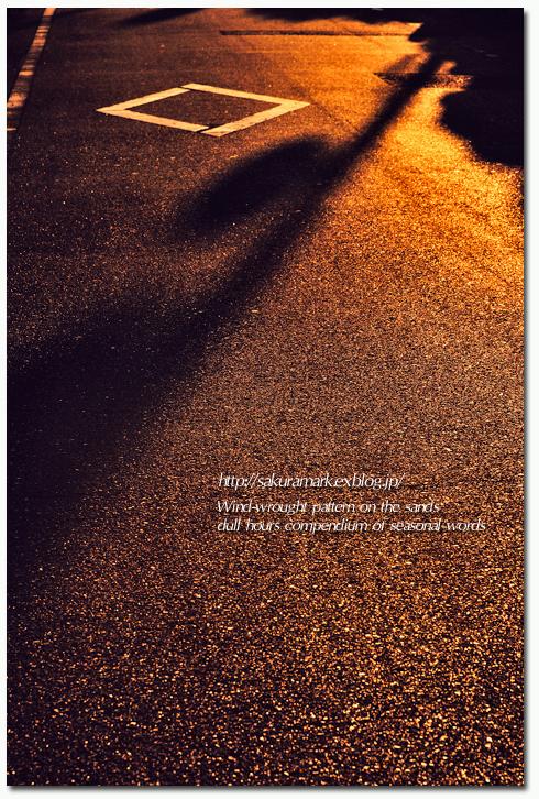 陰影。_f0235723_1650108.jpg