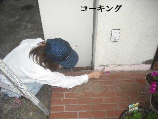 外壁コーキングと浴室タイル修理_f0031037_21591718.jpg