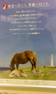目黒川_b0217741_2033970.jpg