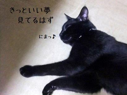 b0118850_139367.jpg