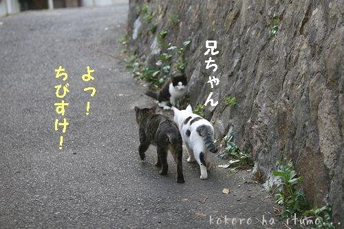b0153363_21102147.jpg