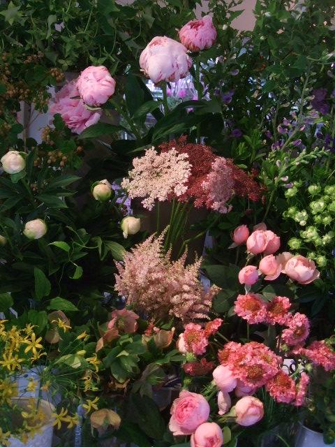 オークリーフ(梅雨時期の花たち)_f0049672_1822413.jpg