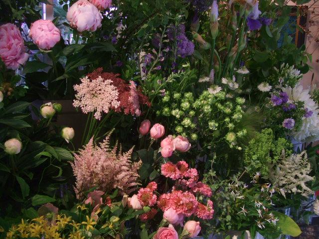 オークリーフ(梅雨時期の花たち)_f0049672_1825311.jpg