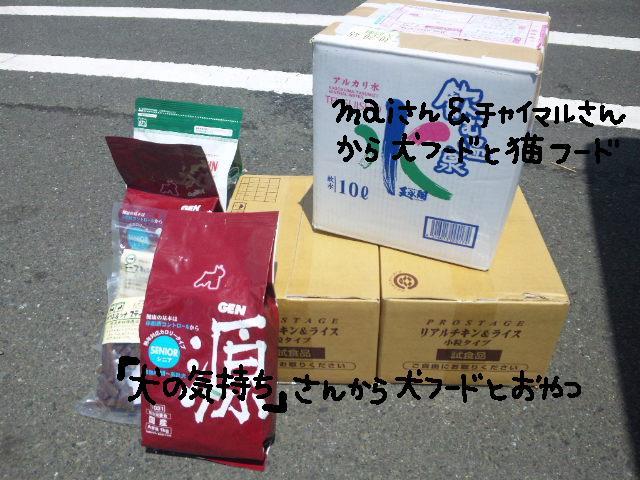 ★UKC JAPAN★ボランティア便りwithチャイマルさん_d0187891_1234558.jpg