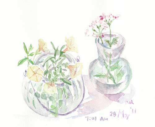 5月の庭 26_d0115092_751207.jpg