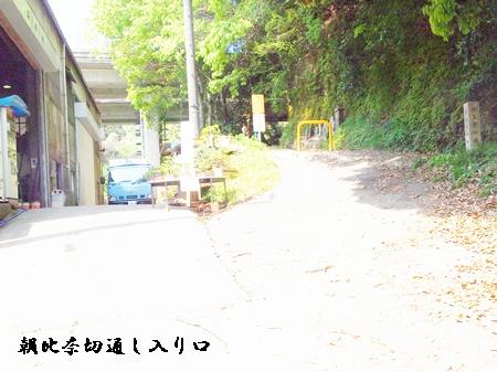 朝比奈切通し_c0073015_23104358.jpg