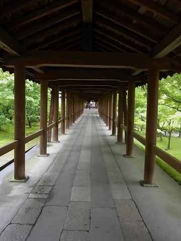 東福寺_c0077531_2331494.jpg