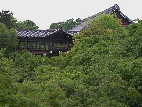 東福寺_c0077531_23534823.jpg