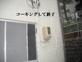 震災被害の緊急処置_f0031037_20482895.jpg