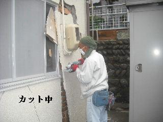 震災被害の緊急処置_f0031037_20504218.jpg