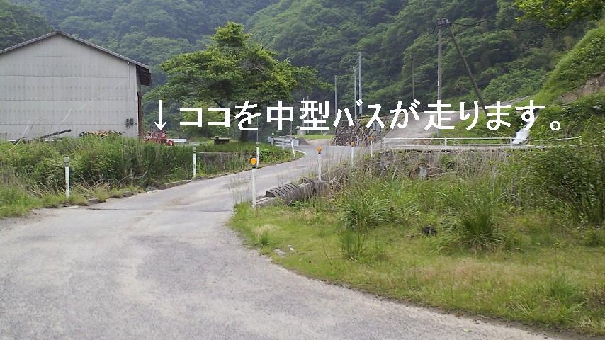 再び東温市観光協会非提供_c0001670_2017559.jpg