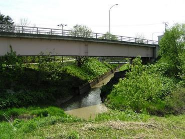 幌向運河_f0078286_1053332.jpg