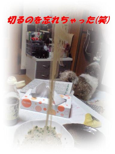 b0124693_20111763.jpg