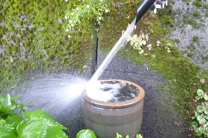 mother water_d0087595_21161663.jpg