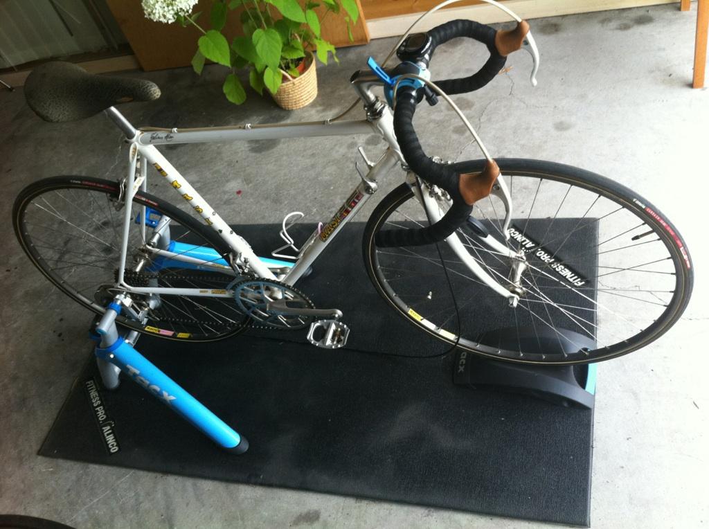 My bicycle 「宝の持ち腐れ」 Useless treasure!_e0203309_22535562.jpg