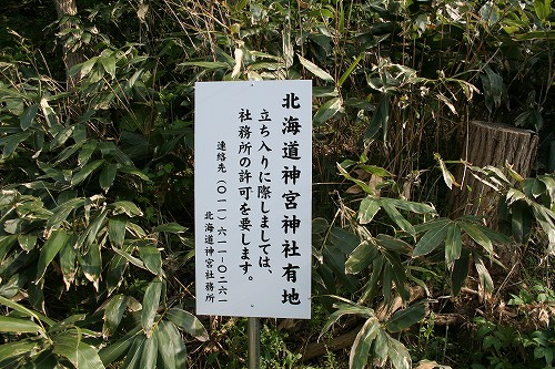 神社山(237m)_c0048117_19494386.jpg
