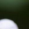 a0189255_21512475.jpg