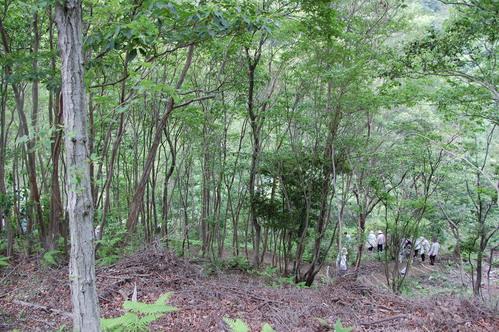 「第5回ほほえみ:大人の林間学校」_c0108460_21214757.jpg