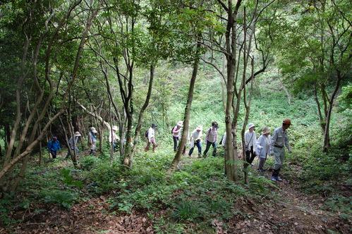 「第5回ほほえみ:大人の林間学校」_c0108460_21425468.jpg