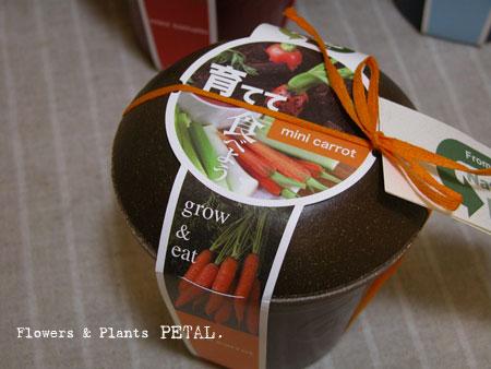 野菜を作って食べる!_d0157716_21254758.jpg
