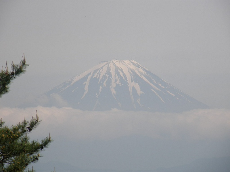 浮き富士だより_d0167225_15235928.jpg
