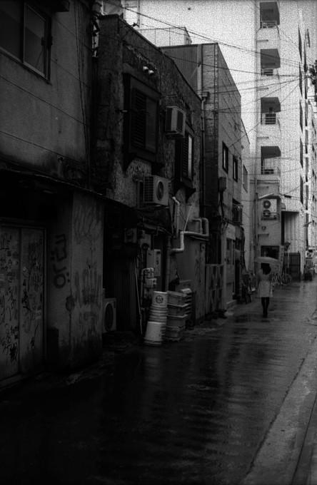 2011-6-4 雨降る日もあれば_c0136330_1205349.jpg