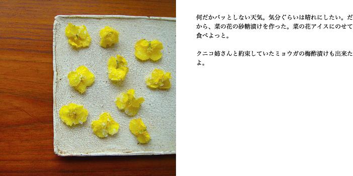 f0220343_1326278.jpg