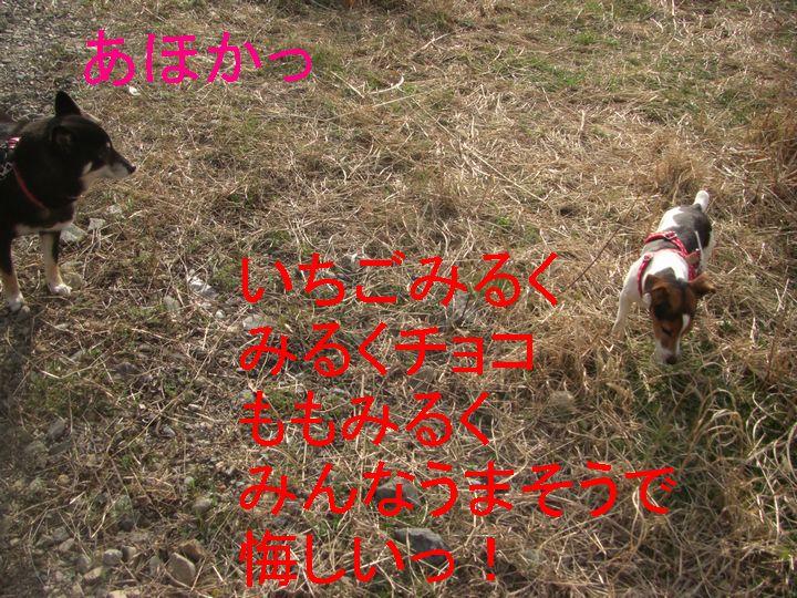 f0053952_13402719.jpg