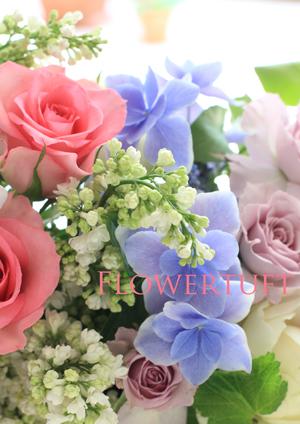 Hydrangea Month☆_c0137872_5143232.jpg
