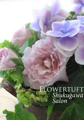 Hydrangea Month☆_c0137872_5175023.jpg