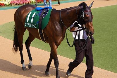 ユニコーンS(GIII)はアイアムアクトレスが、12年振り牝馬史上2頭目のV _b0015386_2113406.jpg