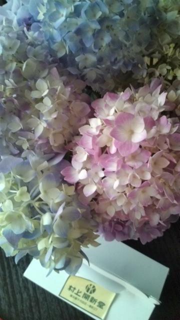 紫陽花と村上開新堂_a0042928_19384688.jpg