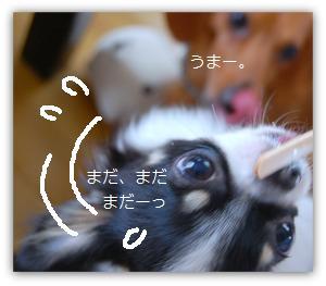 b0112758_1642885.jpg