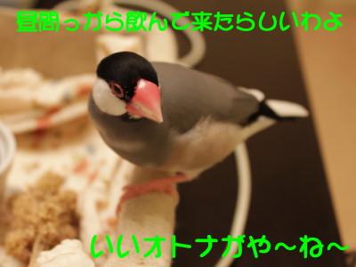 b0158061_21341572.jpg