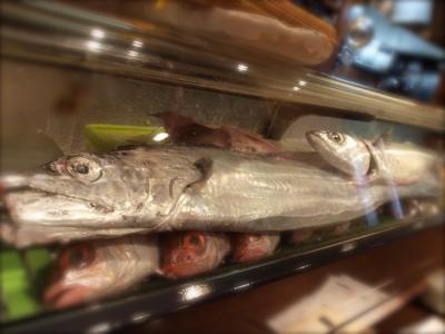 太刀魚_f0232994_2544656.jpg