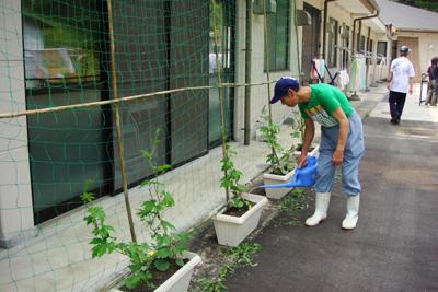 サツマイモの苗を植えました(^^)_a0154110_11214465.jpg