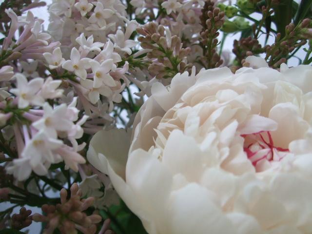 オークリーフ(ライラックと季節の花の花束)_f0049672_16545153.jpg