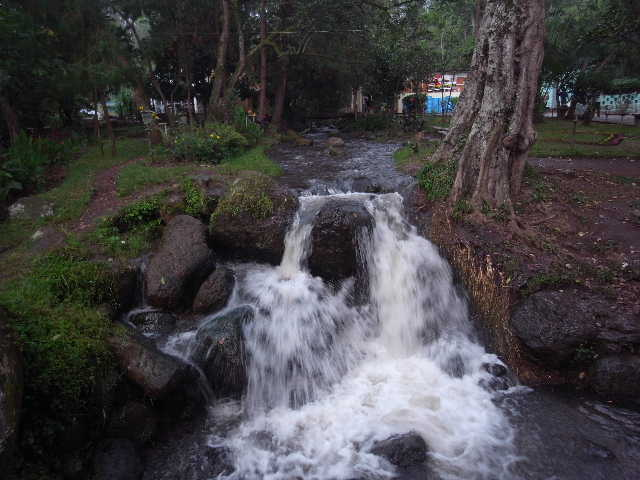 エチオピア(77) ウォンドゲネットの温泉_c0011649_23544849.jpg
