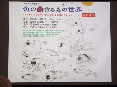 魚の赤ちゃんの世界_c0180460_1812887.jpg