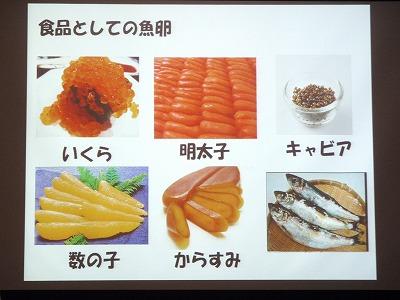 魚の赤ちゃんの世界_c0180460_1824192.jpg