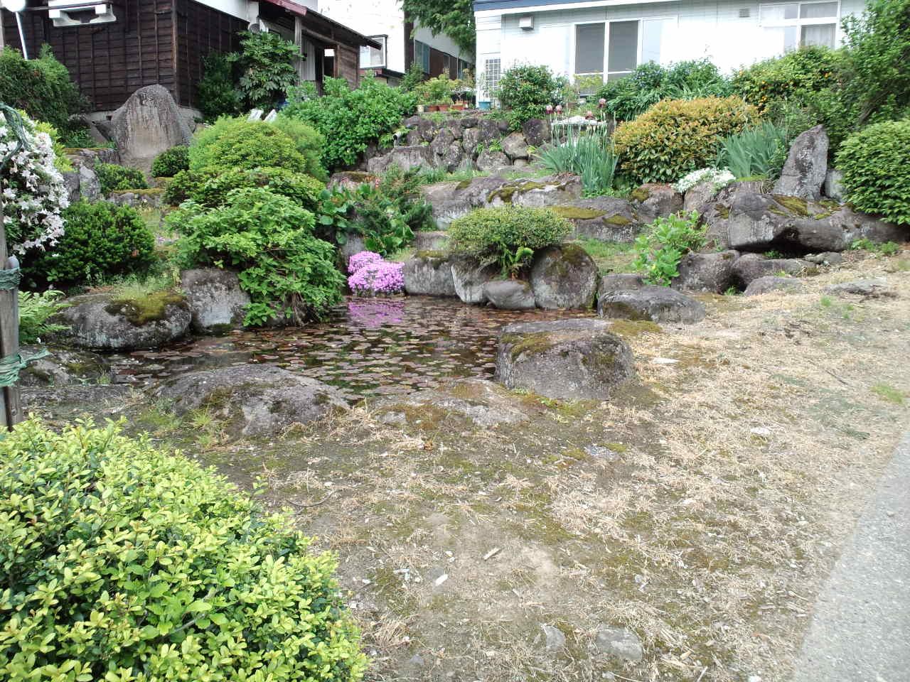 長野の山菜☆りぼんお散歩_c0151965_15311795.jpg