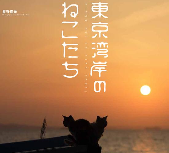 写真展と連動した企画写真集が2タイトル発売されます。_c0194541_13145366.jpg