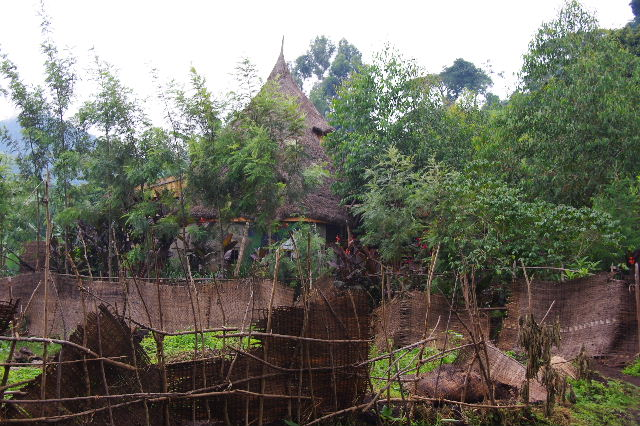 エチオピア(80) 朝のウォンドゲネット・リゾート近辺散策_c0011649_2071867.jpg